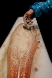 frederic-briois-histoire-de-salage-FBRI6539